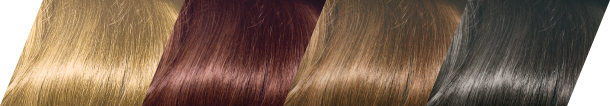 Clairol Professional Beautiful Collection 15 Stunning Shades
