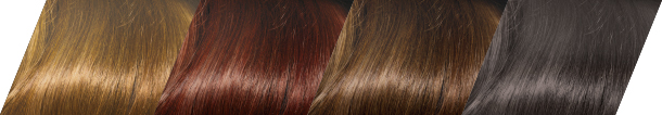 Clairol Professional Advanced Gray Solutions 9 Stunning Shades