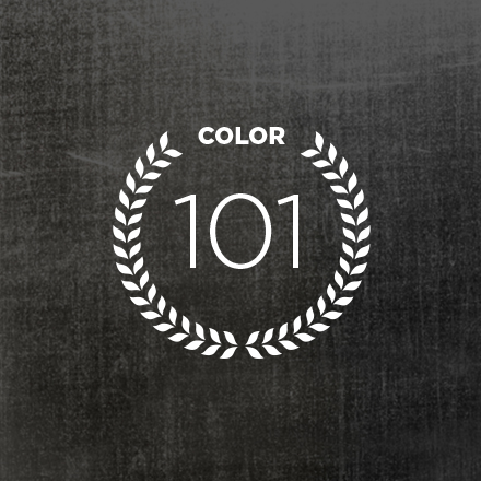 HAIR COLOR 101 ARTICLE